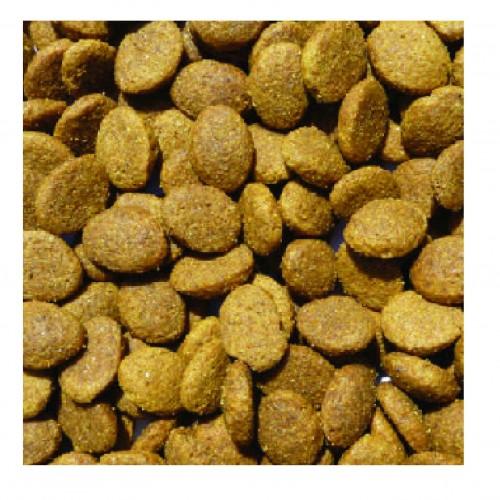 Salmon Potato Large Breed Puppy Dog Food Bowmans Premium